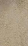 Terrassenplatte 40x60,4 Auster